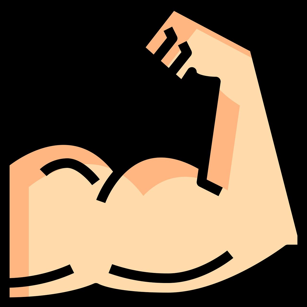 Anhang muscular-5279449_1280.png